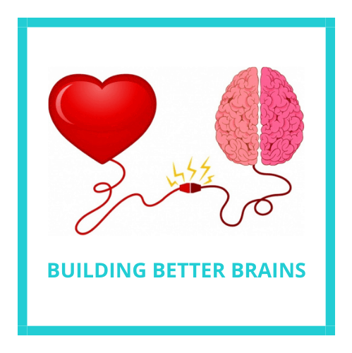 Building Better Brains